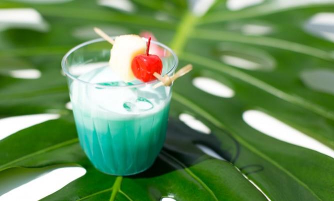 Hawaiian Party!