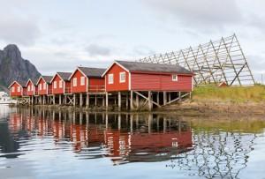 Voyage | Norvège, Tromsø et les îles Lofoten